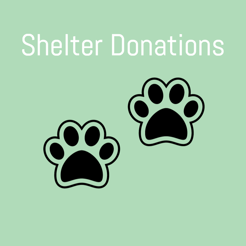 shelter-donations